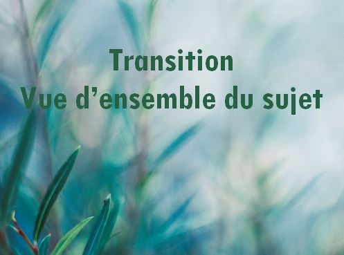 Transition-Vue_densemble