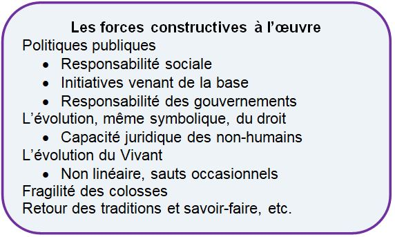 5 Forces loeuvre